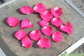 how to dry rose petals with pictures wikihow