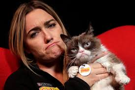 reddit pet peeves grumpy cat counts down to the new year with top pet peeves boston