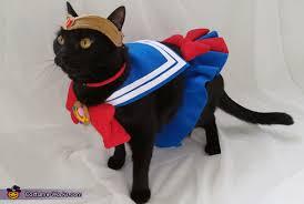 cat costume sailor moon cat costume