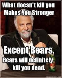 what doesn t kill you makes you stronger except bears bears will