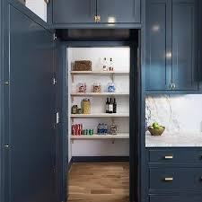 kitchen pantry designs ideas m walk in kitchen pantry designs design ideas neriumgb com