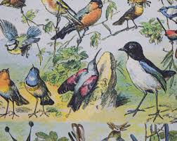 bird wrapping paper bird wrapping paper etsy