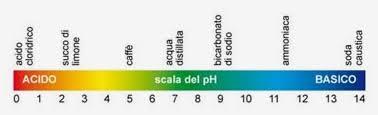 Cibi alcalinizzanti e cibi acidificanti - pH ❖ Vulvodinia.info Images?q=tbn:ANd9GcQZLeCPO8cD_VW5Ia0vfz1tK-H3YyPXO59zeWHXidkivT2PIa4&t=1&usg=__AQQkawUerOCapFflpYFPP-PFeCI=