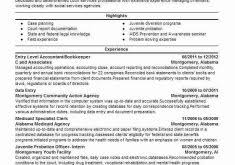 Resume Templates For Entry Level Jobs Download Entry Level Job Resume Examples Haadyaooverbayresort Com