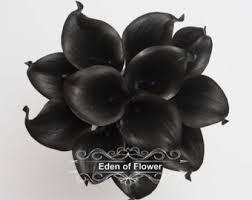 black calla black calla etsy