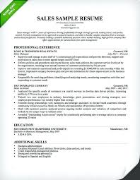 sales executive resume sample salesperson resume insurance sales resume sample sales