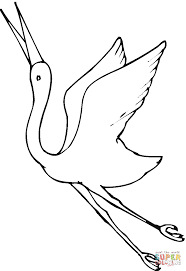 crane fly coloring page free printable coloring pages