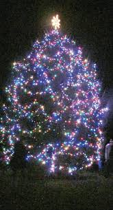 bennington s tree lit during home for the holidays