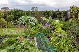 gap gardens view of cottage vegetable garden with ornamental