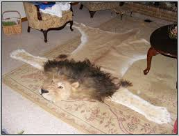 animal skin rugs genuine australian four pelt sheepskin rug with