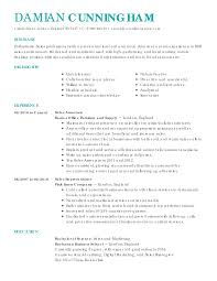 Resume Reimage Repair Resume Sales Lady Free Resume Example And Writing Download