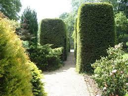 english garden pictures garden flower photos