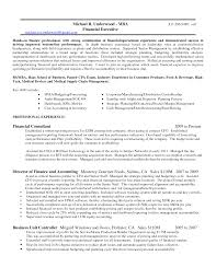 Ceo Resume Example Financial Controller Resume Samples Visualcv Resume Samples