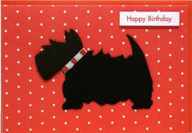 scottish terrier birthday card karenza paperie