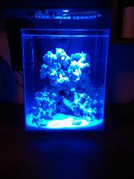 stunner led aquarium light strips 5 gallon chi build pico reefs nano reef com community
