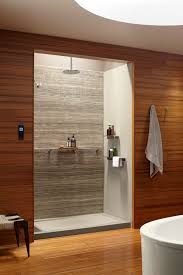 Cheap Shower Wall Ideas by February 2017 U0027s Archives One Piece Shower Inserts Corner Shower