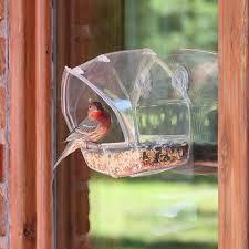 cool bird house plans cool bird feeder bird 83 bird feeder and bird house plans unique