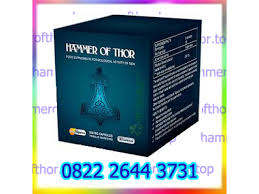agen obat hammer of thor di banten 082226443731 jual obat kuat