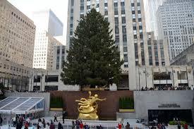 new york city rockefeller center 01 christmas tree and statue of