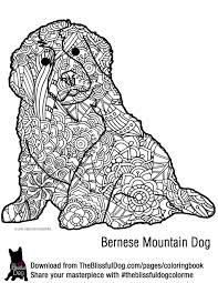 coloring book bernese mountain dogs mountain dogs and dog
