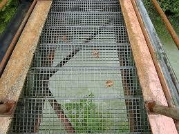 gitter treppe kostenloses foto treppe eisentreppe gitter stufen