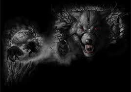 imagenes de fondo de pantalla lobos imagenes dark 24