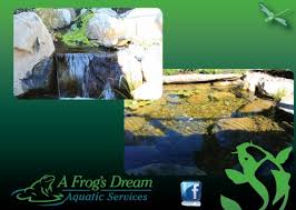 Aquascape Nj Pond Installation Maintenance Contractor Long Valley Morris County