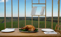 thanksgiving dinner on a budget 101 howstuffworks