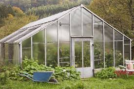 Greenhouse Starter Kits Top 4 Greenhouse Kits Choosing The Greenhouse For You