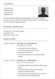 Different Types Of Resume It Resume Format Template 7 Free Word Pdf Format Downloadkinds