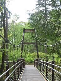 Botanical Garden Bellevue Suspension Bridge At The Ravine Experience Picture Of Bellevue