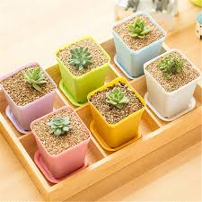 compare prices on colorful plastic pots online shopping buy low