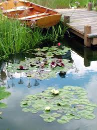 160 best boat dock and houseboat gardens images on pinterest