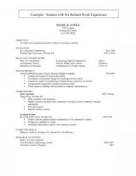 Best Sales Resumes by Curriculum Vitae Internship Letter Format Career Objective In A