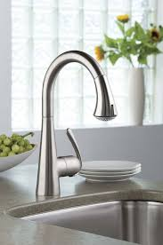 kitchen faucets stores the fixture gallery grohe ladylux 3 sink dual spray pull