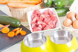 how to create a raw dog food recipe