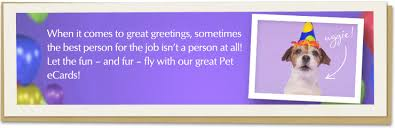 pet ecards american greetings