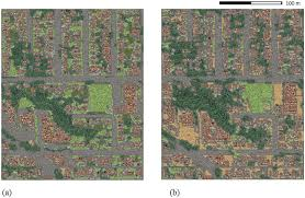 remote sensing free text monitoring tree cover