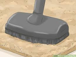 How To Clean A Fluffy Rug 3 Ways To Clean A Shag Rug Wikihow