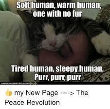 Meme Sleepy - soft human warm human one with no fur tired human sleepy human purr