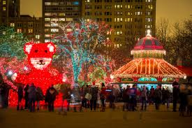Zoo Light Chicago by Manueldiazphotography Photo Keywords Christmas