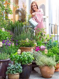 Herb Container Gardening Ideas Potted Herb Garden 35 Herb Container Gardens Pots Planters