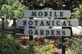 all the dirt on gardening mobile botanical gardens mobile al