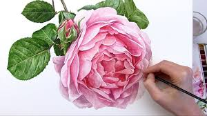How To Paint A Flower Vase How To Paint A Rose Flower In Watercolour Anna Mason Art