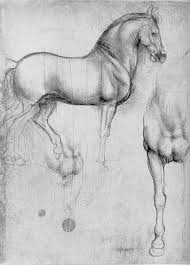 silverpoint and meticulous drawing laura shechter