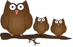 owls on owl clip art owl and cartoon owls image 5