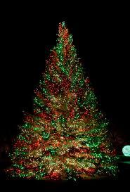 christmas christmas tree lights happy holidays with splendi