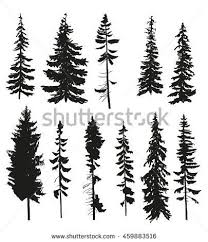 vector silhouettes different pine trees stock vector 459883516
