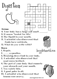 digestion worksheet free worksheets library download and print