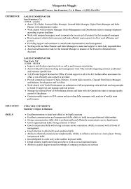 it professional resume templates glamorous resume examples 2017 it professional resume examples